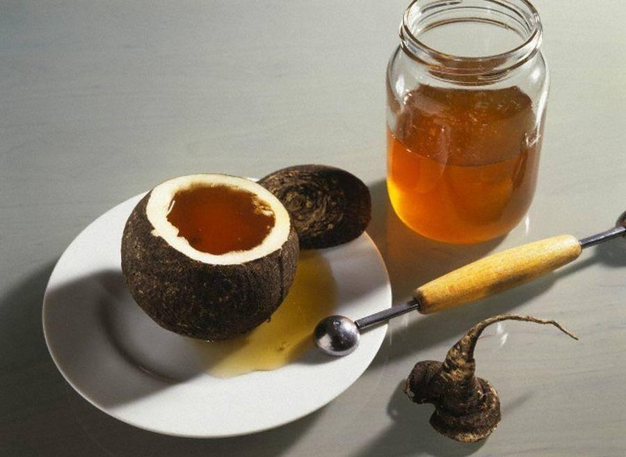 Редька с медом от кашля: рецепты приготовления лекарства