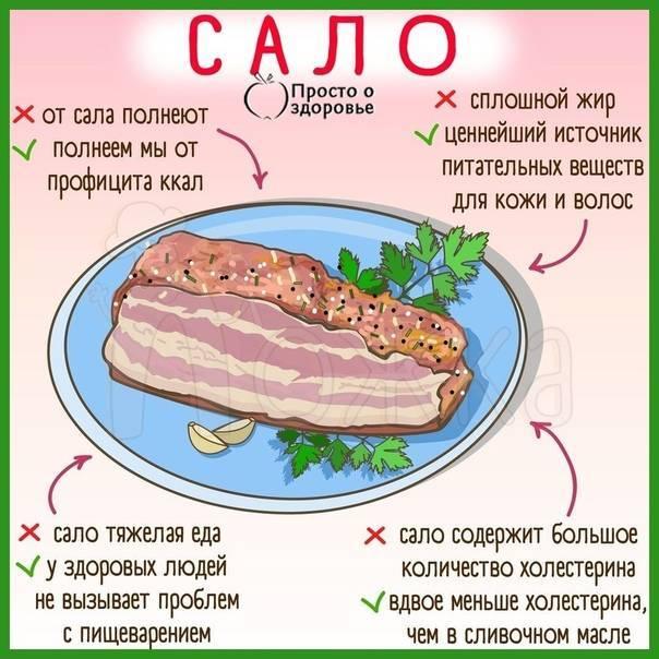 Есть ли в сале холестерин: содержание вещества в продукте