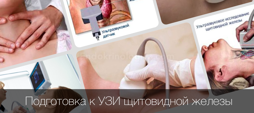 узи щитовидной железы подготовка к процедуре