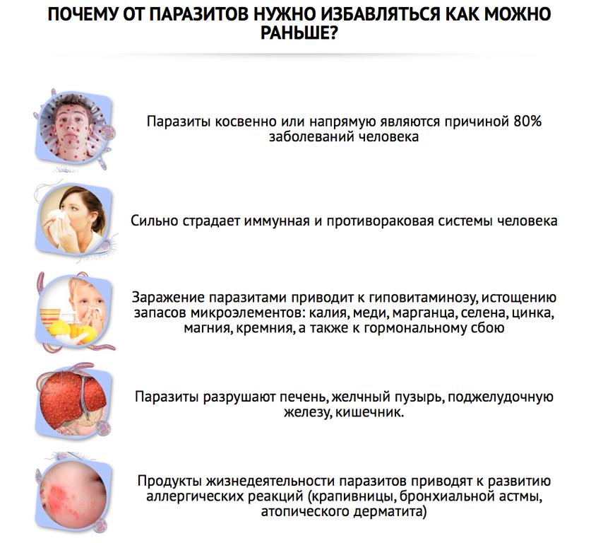 профилактика от паразитов в организме