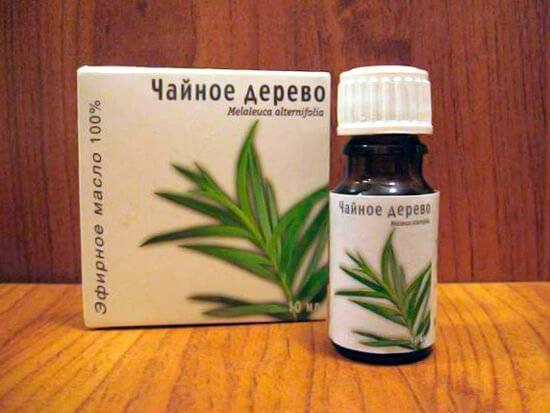 Масло чайного дерева - запись пользователя viki.sabanova (vikisabanova) в сообществе семейное здоровье в категории народная медицина - babyblog.ru