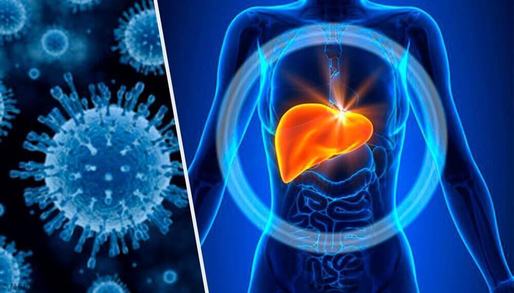 Гепатит с: пути заражения и способы передачи