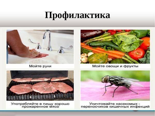 профилактика глистов у человека