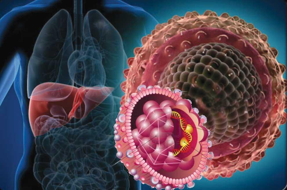 что такое гепатит ц
