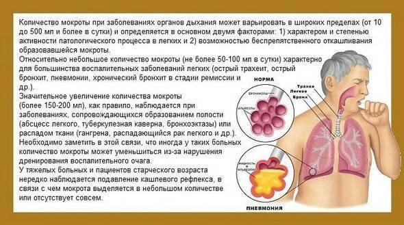 мокрый кашель лечение