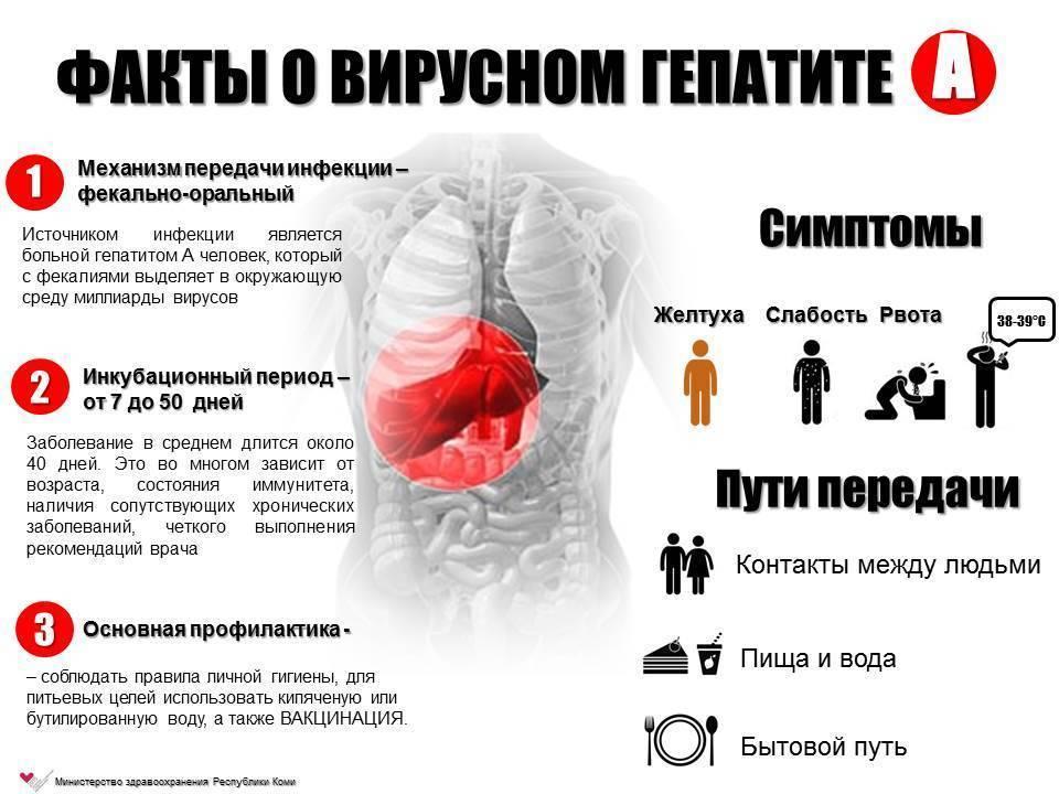 вирусный гепатит б