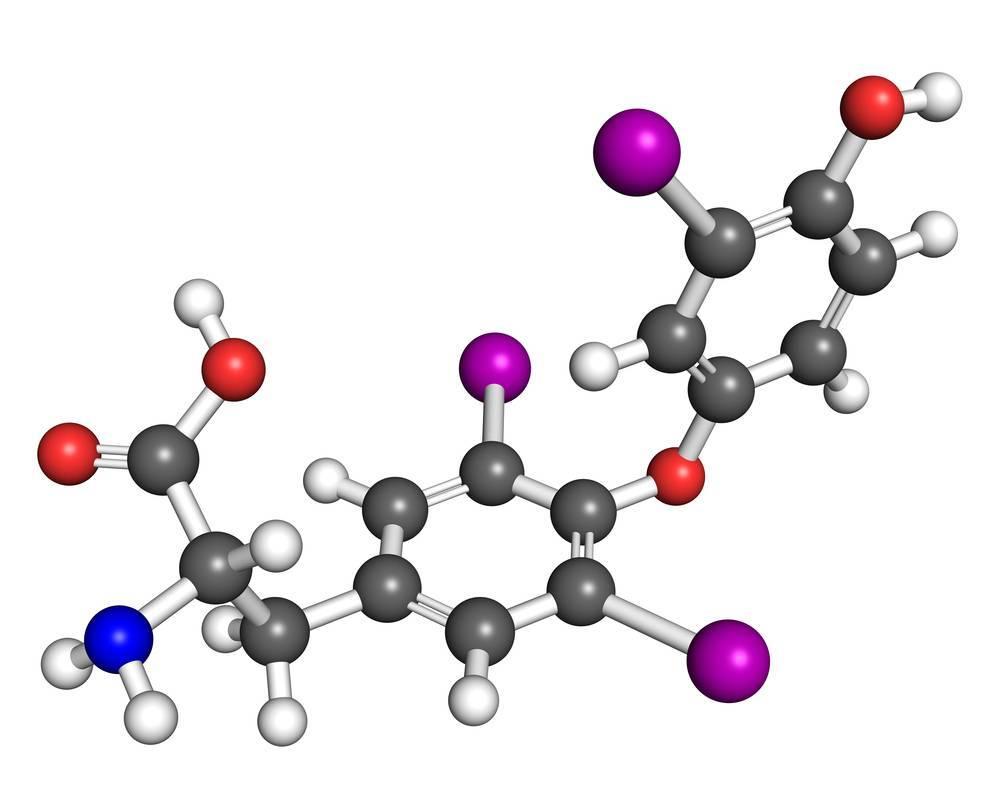 гормон тироксин свободный