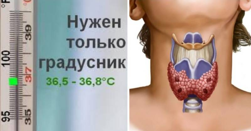 температура при щитовидной железе