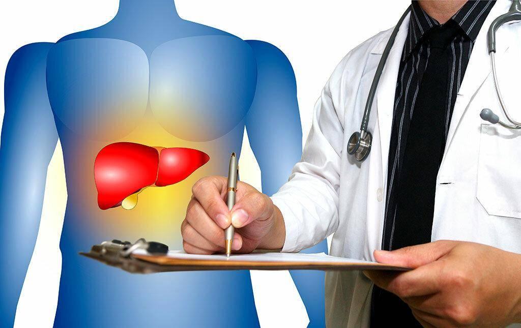 Кто такое врач гепатолог и что он лечит?