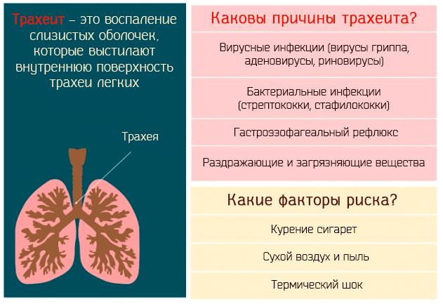 Лечение при трахеитном кашле