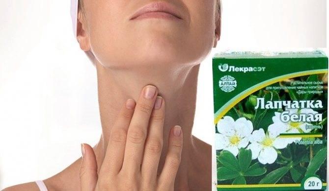 Корень белой лапчатки: применение в народной медицине