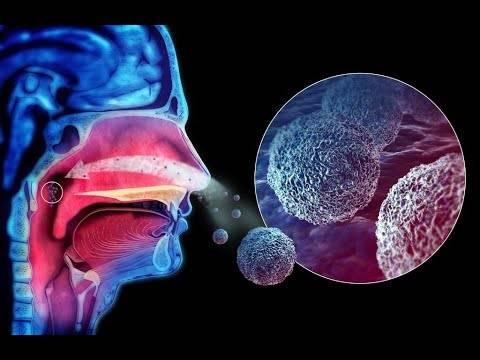 Что делать если пропало обоняние и вкус. причины и лечение