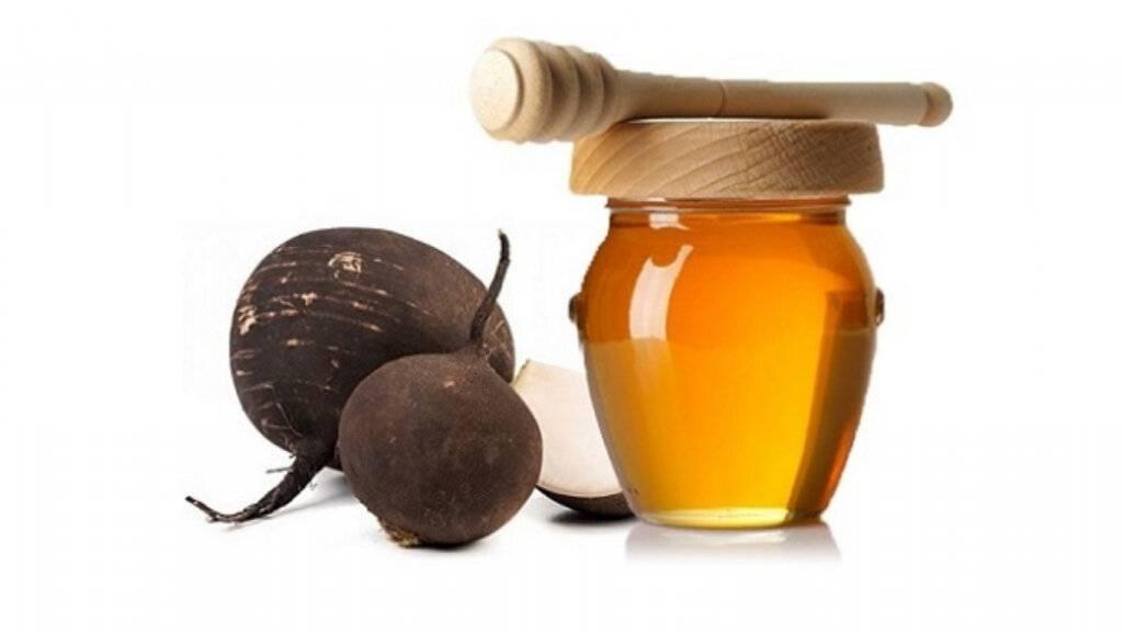 Можно ли лечить кашель при беременности редькой с медом?