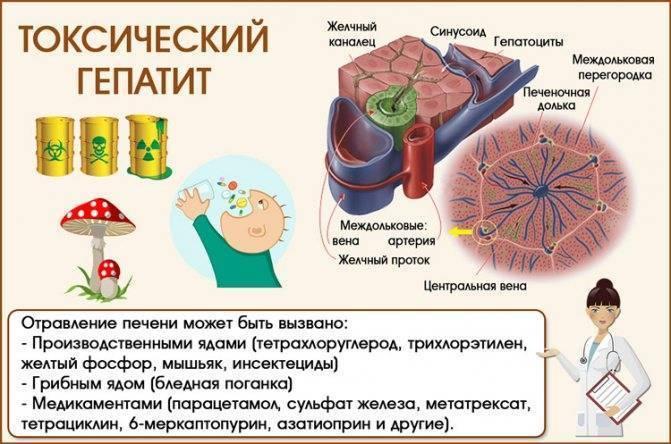 токсический гепатит причины