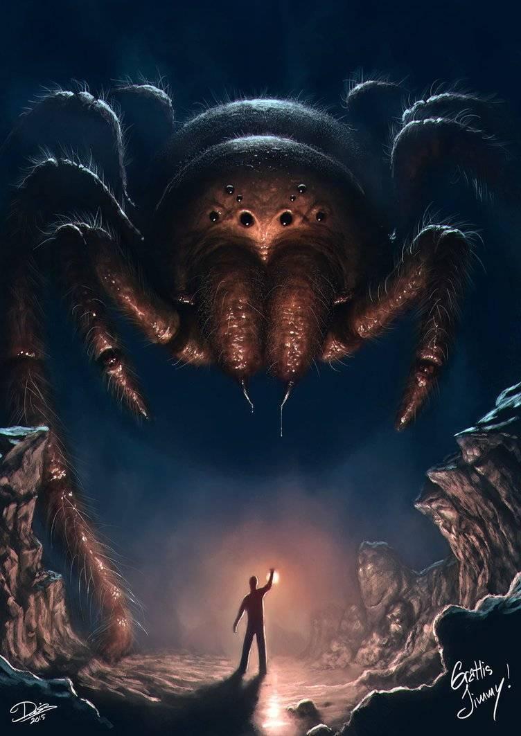 Арахнофобия: почему мы боимся пауков