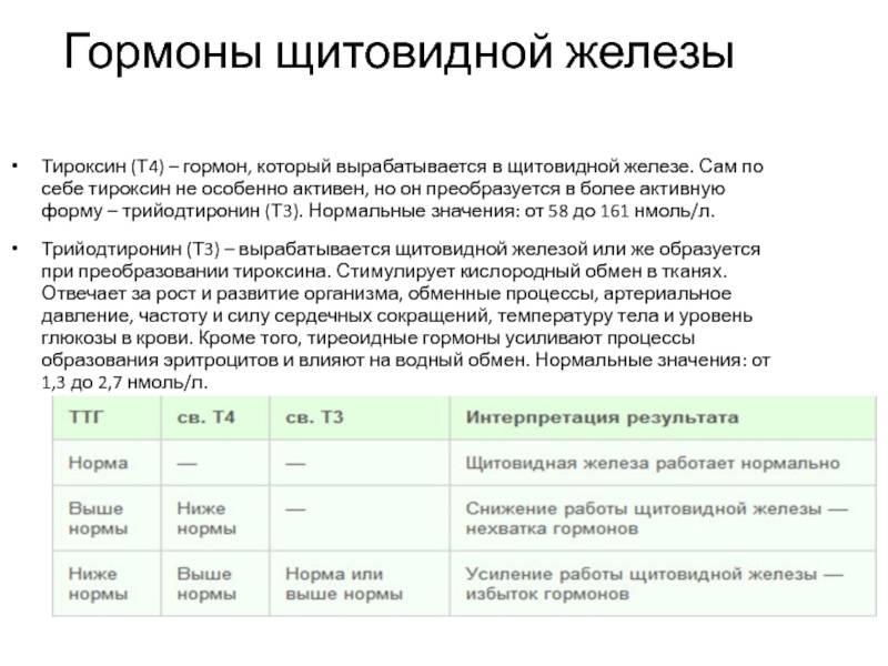 тироксин т4
