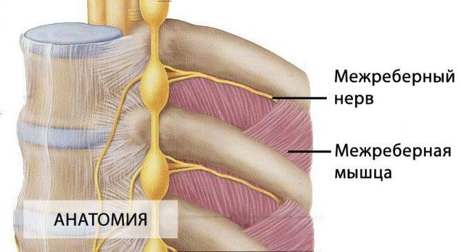 лечение невралгии плечевого нерва