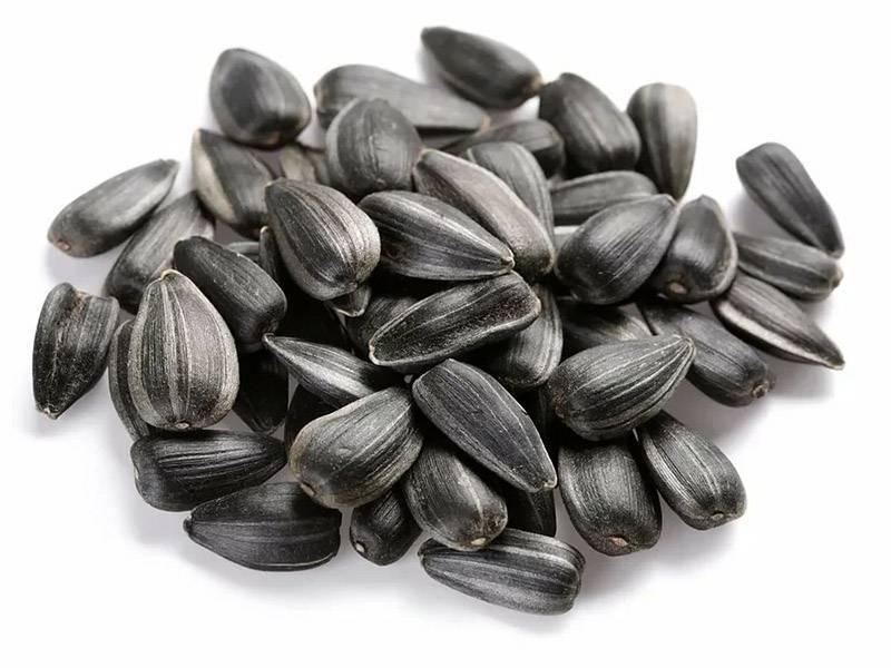 Как снизить холестерин с помощью семечек подсолнуха