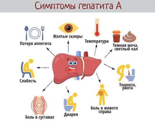 Температура высокая при гепатите