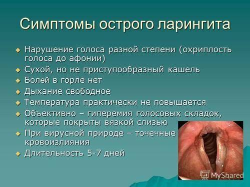 Ларинготрахеит у детей и взрослых: симптомы, лечение. чем лечить ларинготрахеит