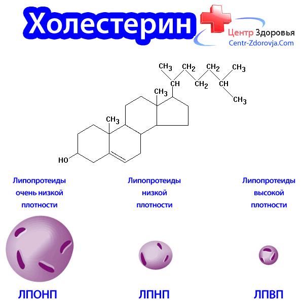 Лпвп — липопротеиды высокой плотности («хороший холестирин»)