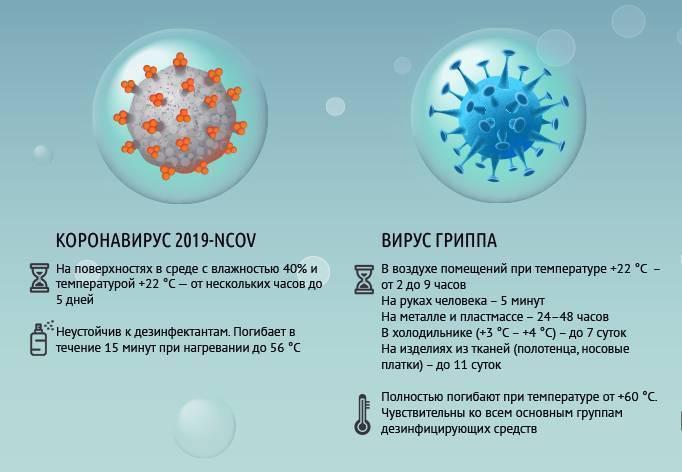 Сколько живет во внешней среде вирус гепатита а
