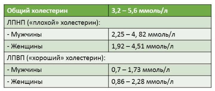Высокий холестерин: причины и лечение