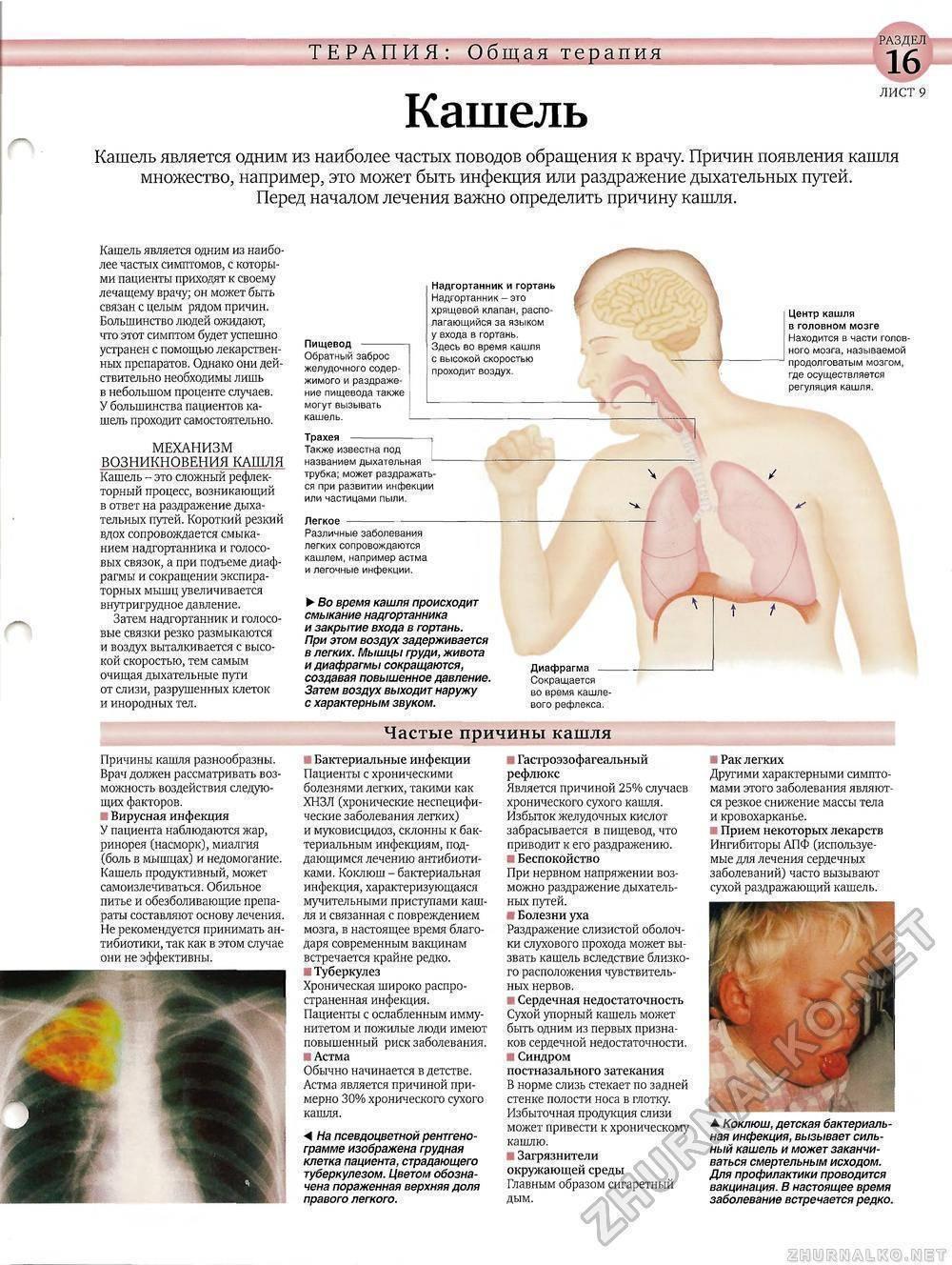Желудочный кашель как симптом патологий жкт