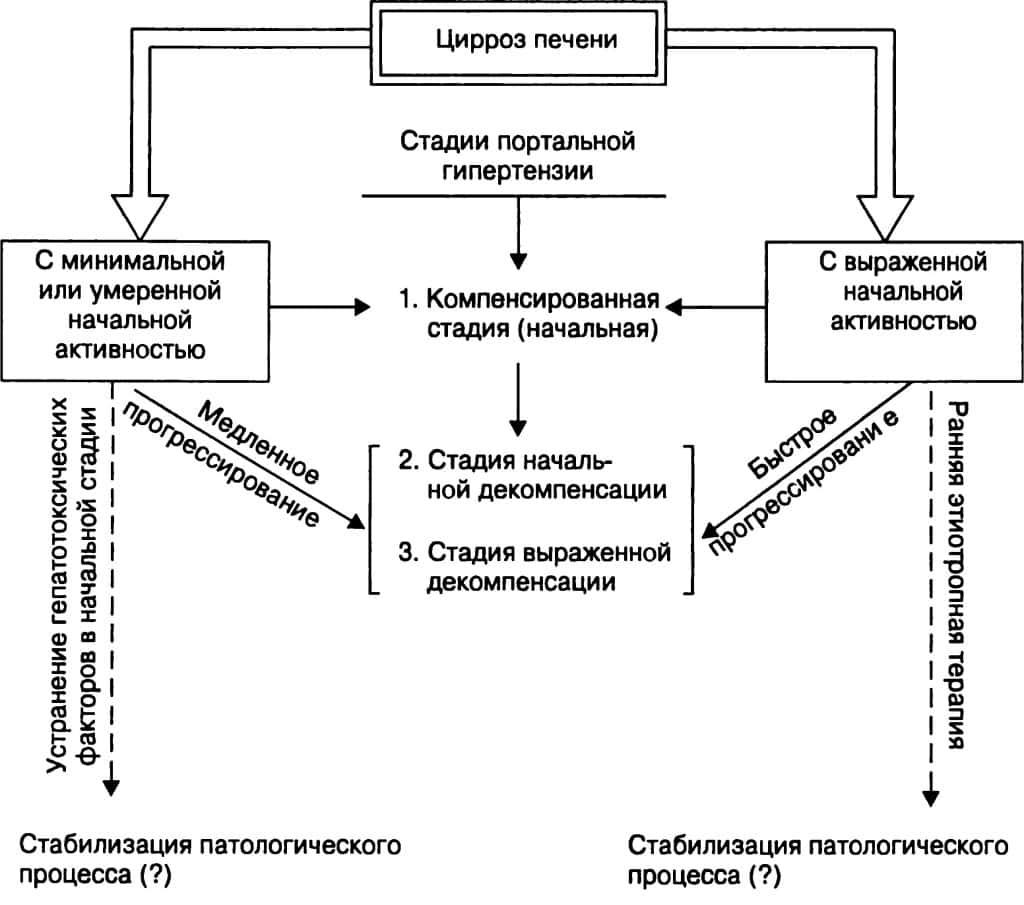 Цирроз печени и портальная гипертензия: основная клиническая картина и прогноз