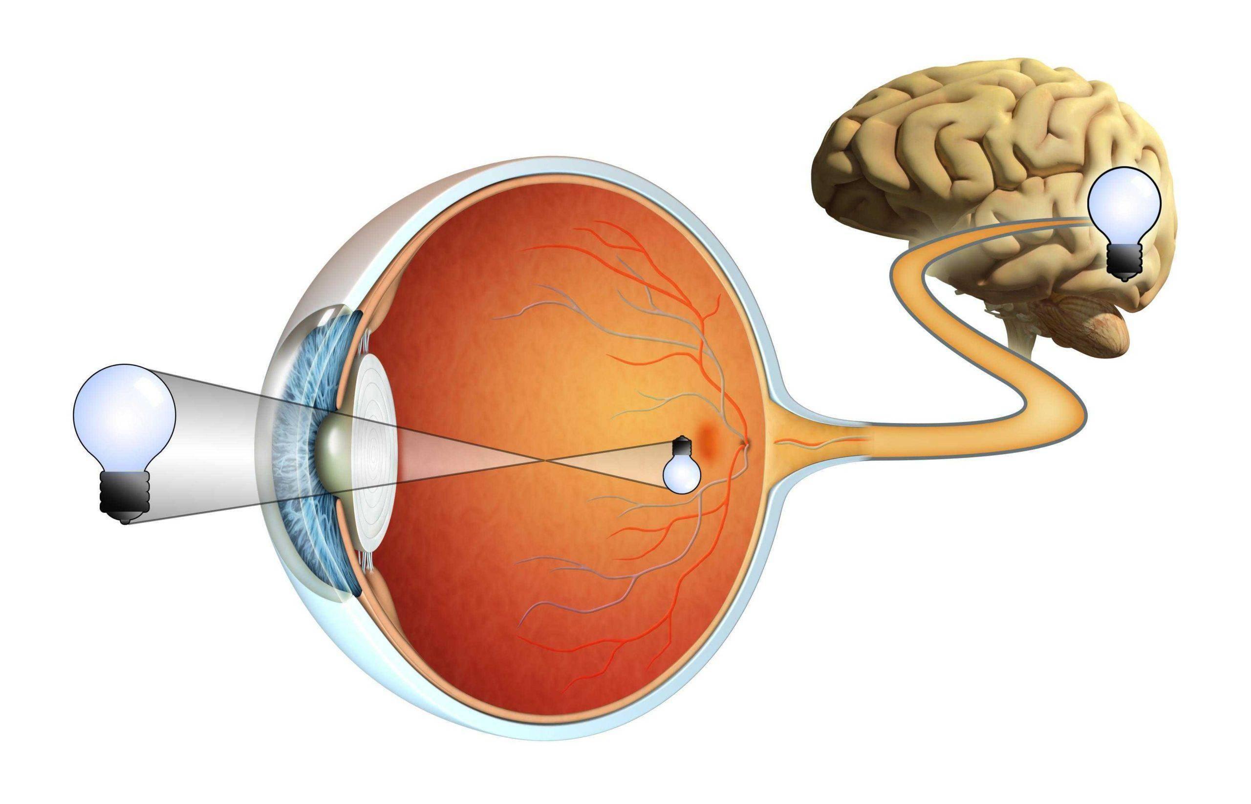 лечение глазного нерва