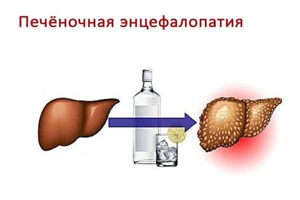 Гепатит с и употребление алкоголя