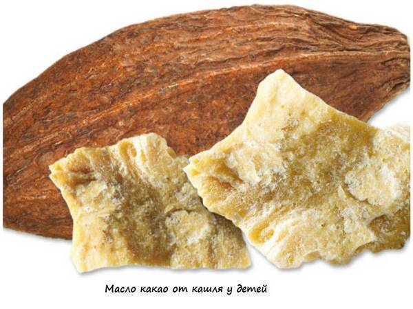 Масло какао – незаменимое средство для борьбы с кашлем у взрослых и детей