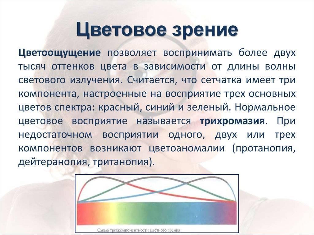 Цветоощущение — википедия с видео // wiki 2