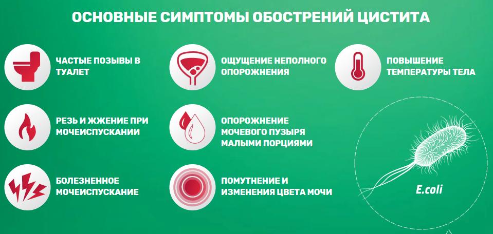 таблетки для профилактики цистита