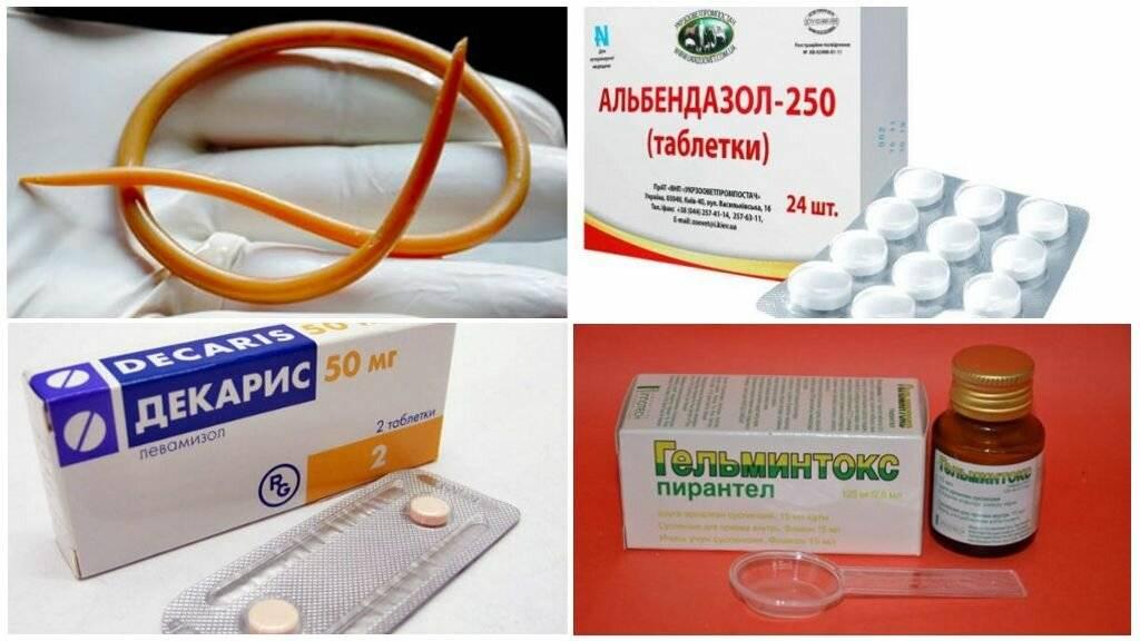 Лекарство от глистов для человека широкого спектра действия