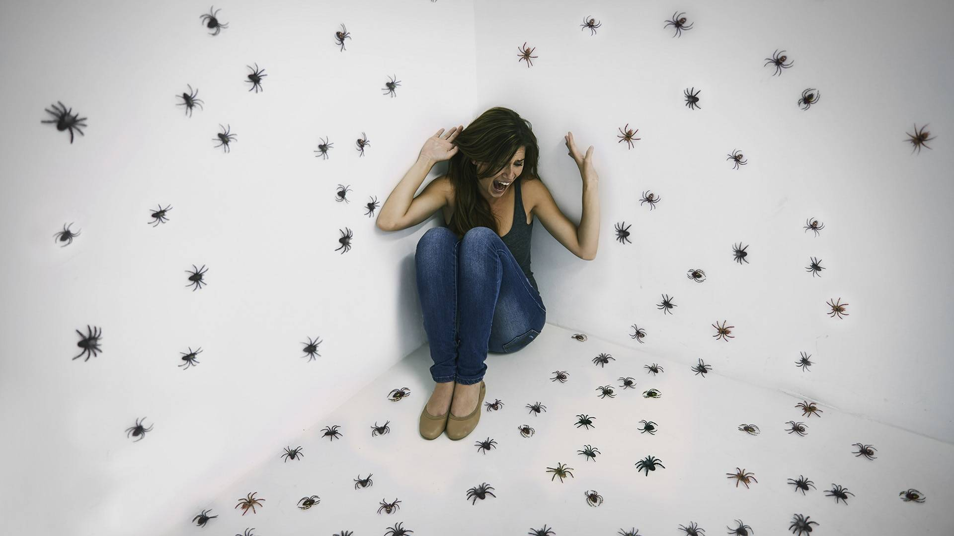 Инсектофобия– страх насекомых