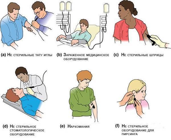 заразен ли гепатит в в быту