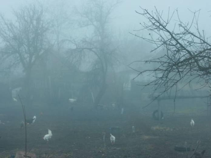 правый глаз видит как в тумане