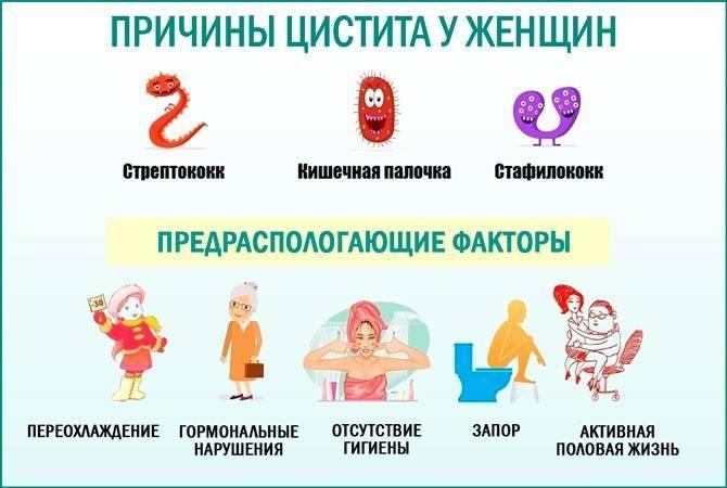 Цистит после интимной близости (посткоитальный): причины, симптомы, лечение, профилактика рецидивов
