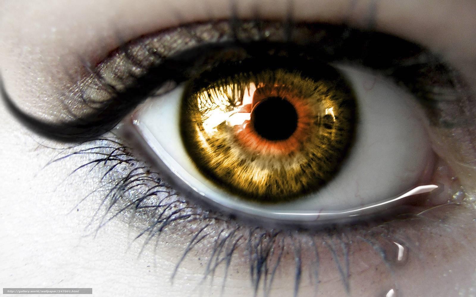 Про зрачок - запись пользователя ольга (timoext) в сообществе здоровье новорожденных в категории болезни глаз - babyblog.ru