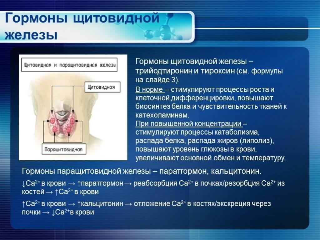 Почему появляется узел в щитовидке, если гормоны в норме? узлы на щитовидной железе: причины, симптомы, методы лечения.