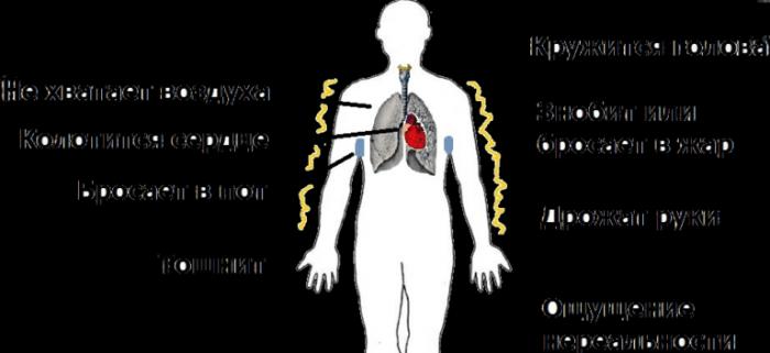 Всд и панические атаки при шейном остеохондрозе