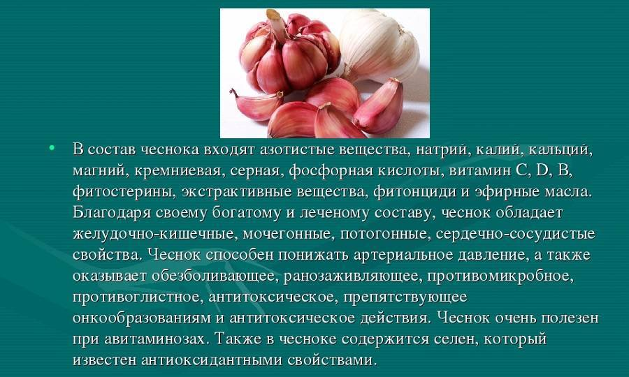 При геморрое можно есть чеснок и лук при
