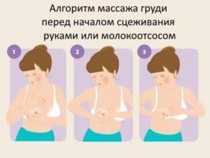 как массировать грудные железы при застое молока
