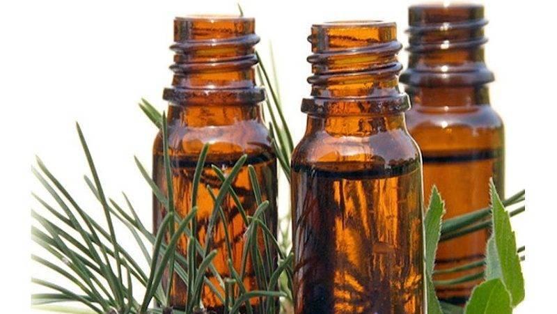 Камфорное масло: для чего применяют и как его используют?