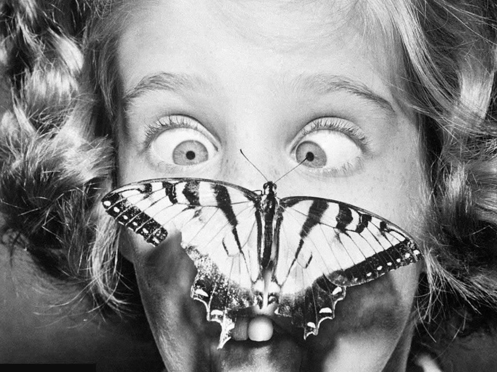 боязнь бабочек фобия