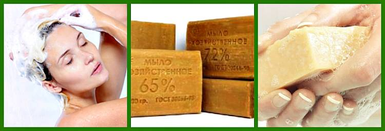 Специалисты рассказали, какое мыло лучше выбирать при борьбе с коронавирусом – москва 24, 23.03.2020