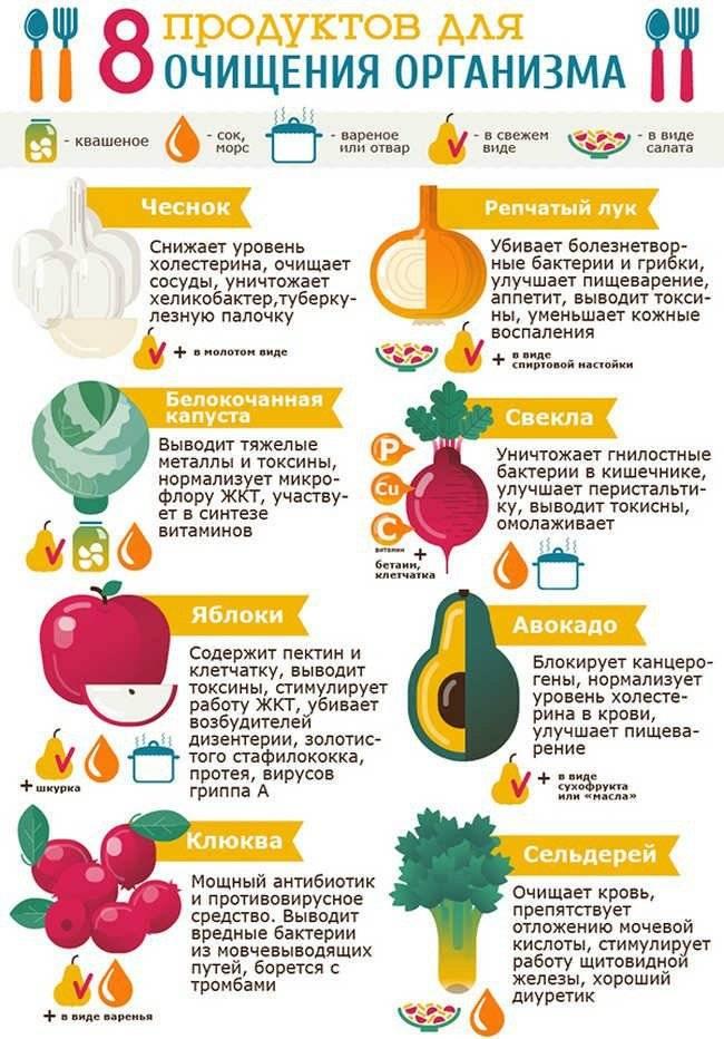 Какие продукты очищают и восстанавливают печень - механизм действия и список