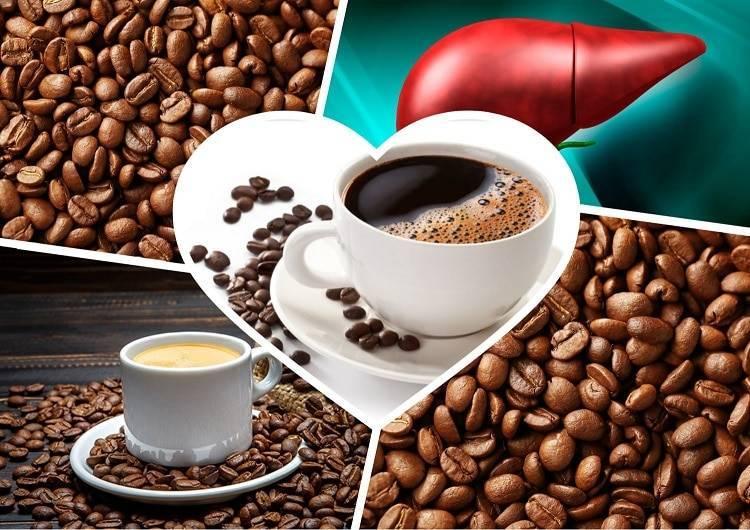 Полезное и вредное влияние кофе на печень: можно ли его пить при больном органе?