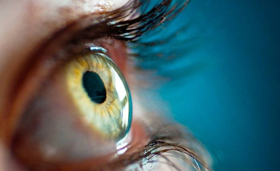полезно для глаз для зрения